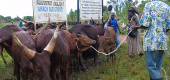 Minister For Northern Uganda Proposes Rehabilitation Of Aswa Ranch