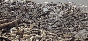 Water Shortage Looms in Gulu